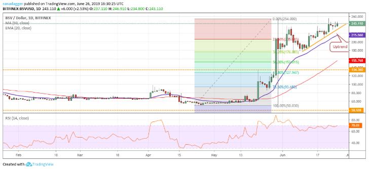 BSV/USD chart  Coin Top 8
